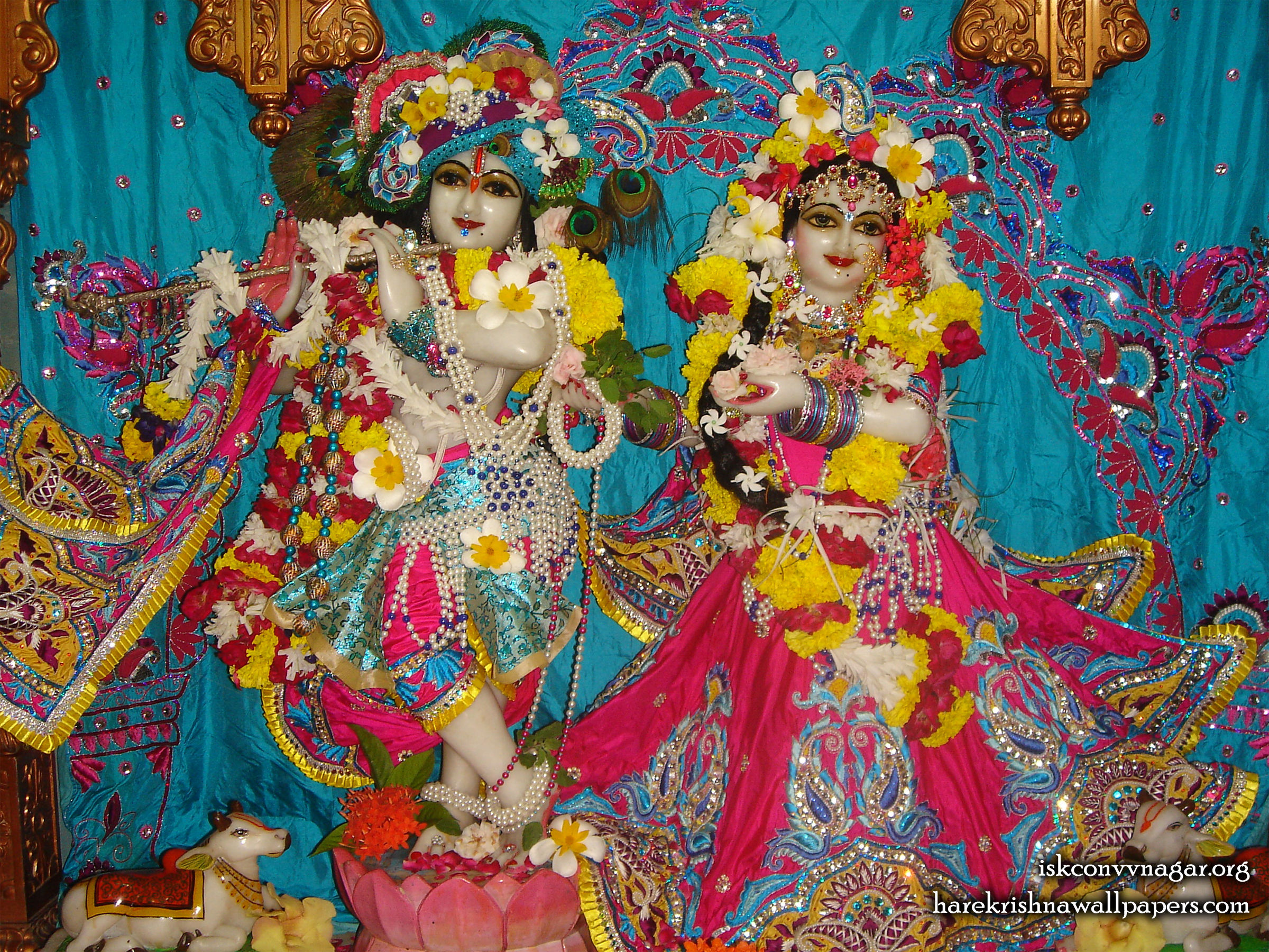 Sri Sri Radha Giridhari Wallpaper (030) Size 2400x1800 Download