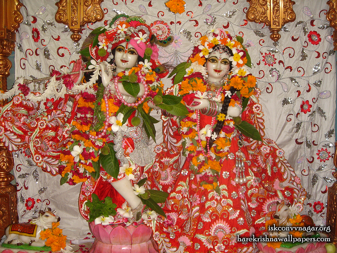 Sri Sri Radha Giridhari Wallpaper (031) Size 1152x864 Download