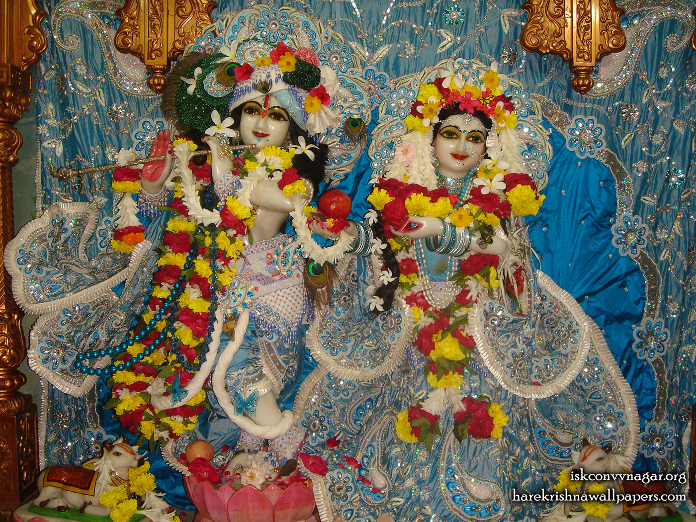 Sri Sri Radha Giridhari Wallpaper (032) Size 1400x1050 Download