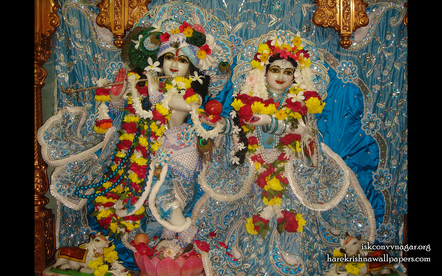 Sri Sri Radha Giridhari Wallpaper (032) Size 1440x900 Download