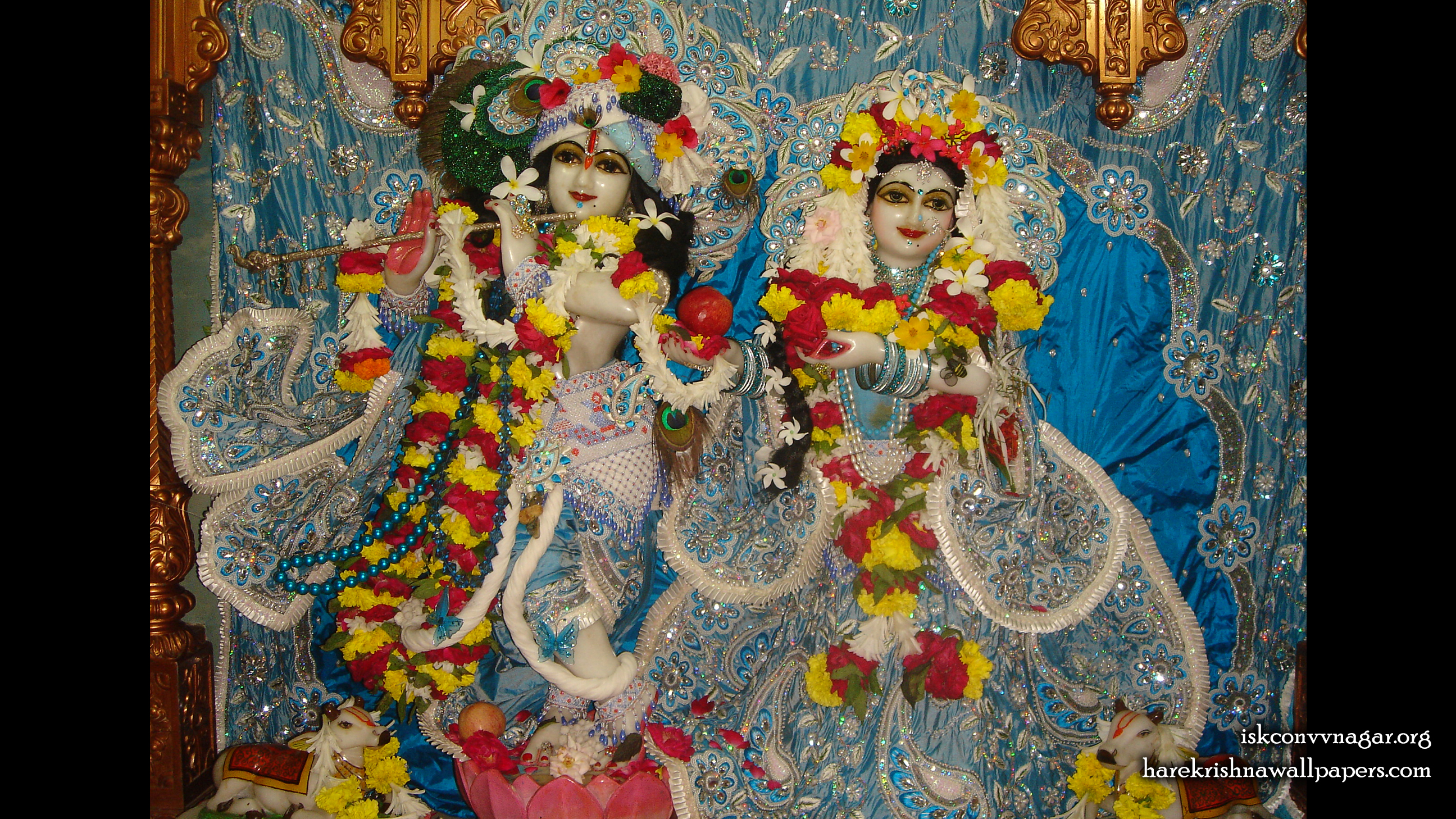 Sri Sri Radha Giridhari Wallpaper (032) Size 2400x1350 Download