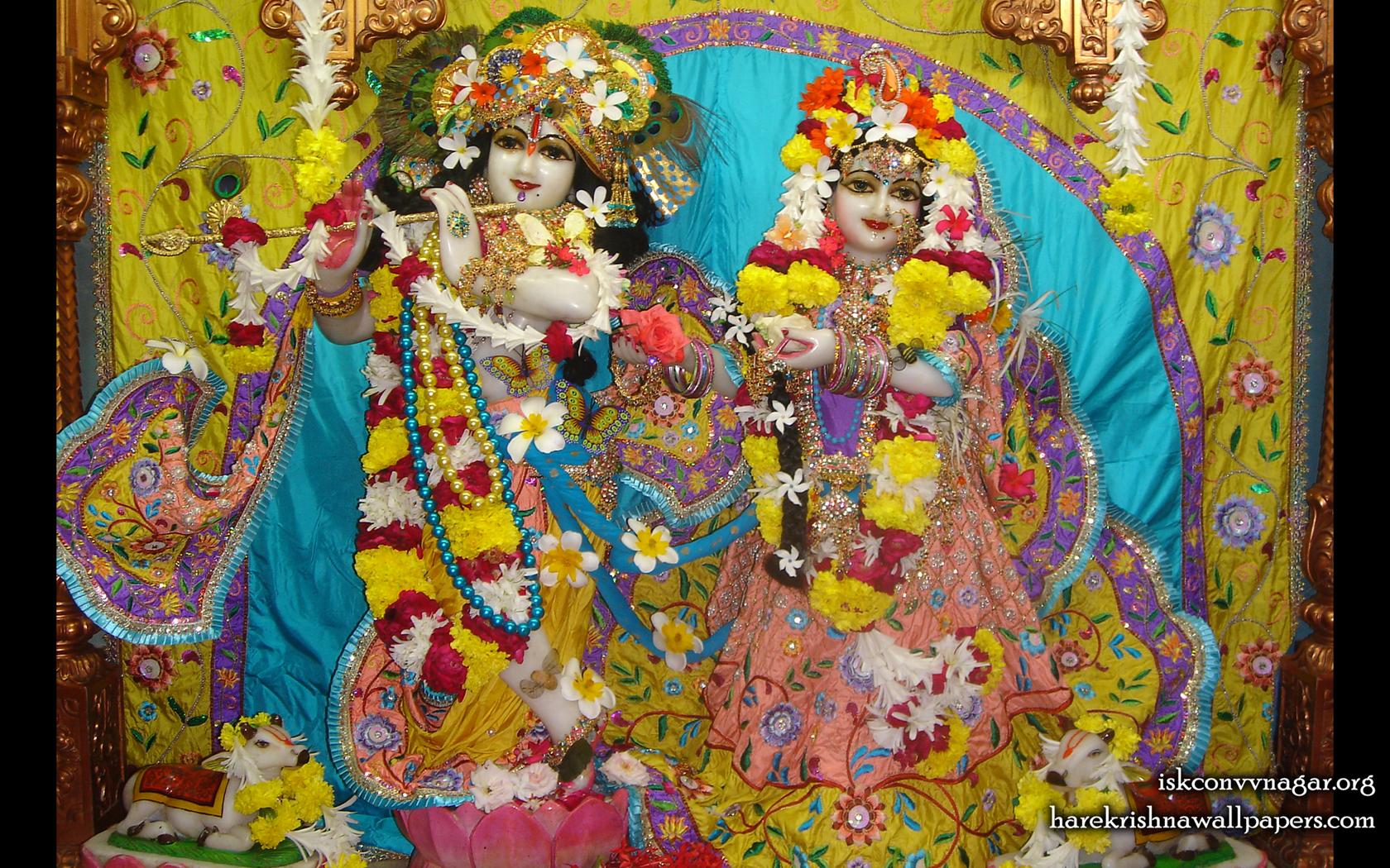 Sri Sri Radha Giridhari Wallpaper (033) Size 1680x1050 Download
