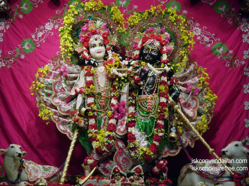 Sri Sri Krishna Balaram Wallpaper (010) Size 800x600 Download