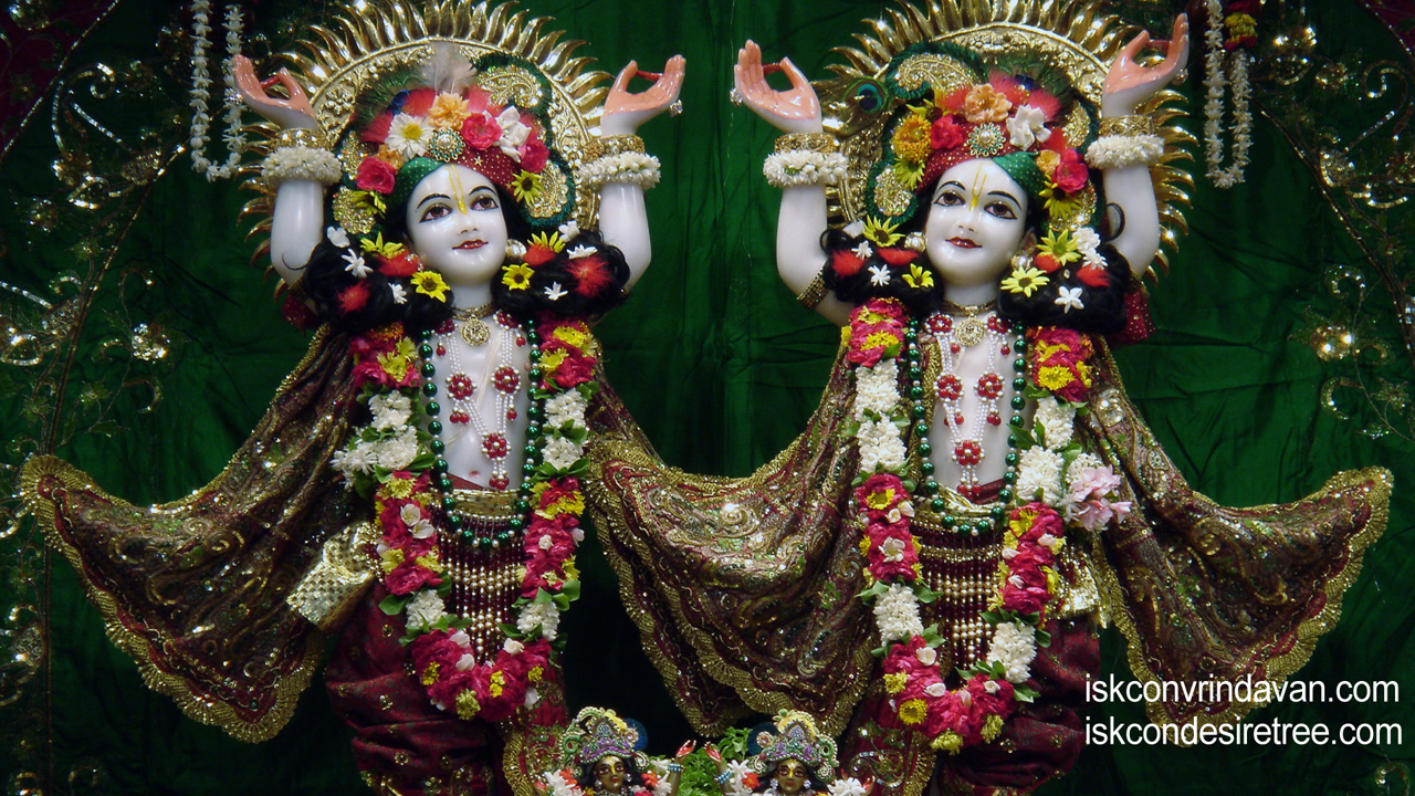Sri Sri Gaura Nitai Wallpaper (015) Size1280x720 Download