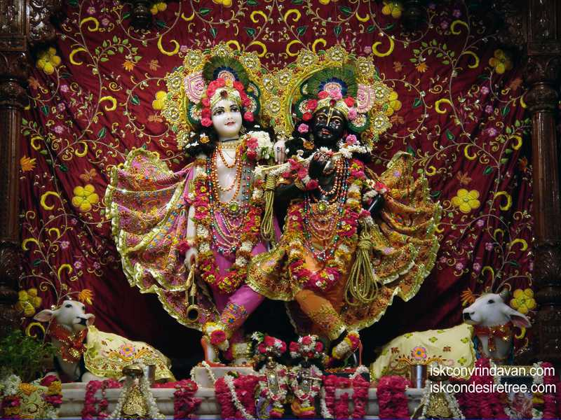 Sri Sri Krishna Balalram Wallpaper (018)