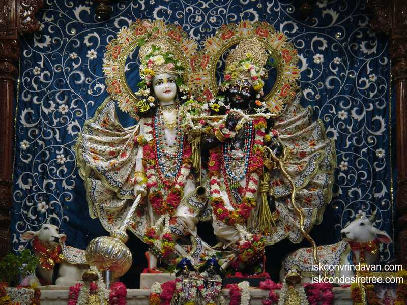 Sri Sri Krishna Balalram Wallpaper (022)