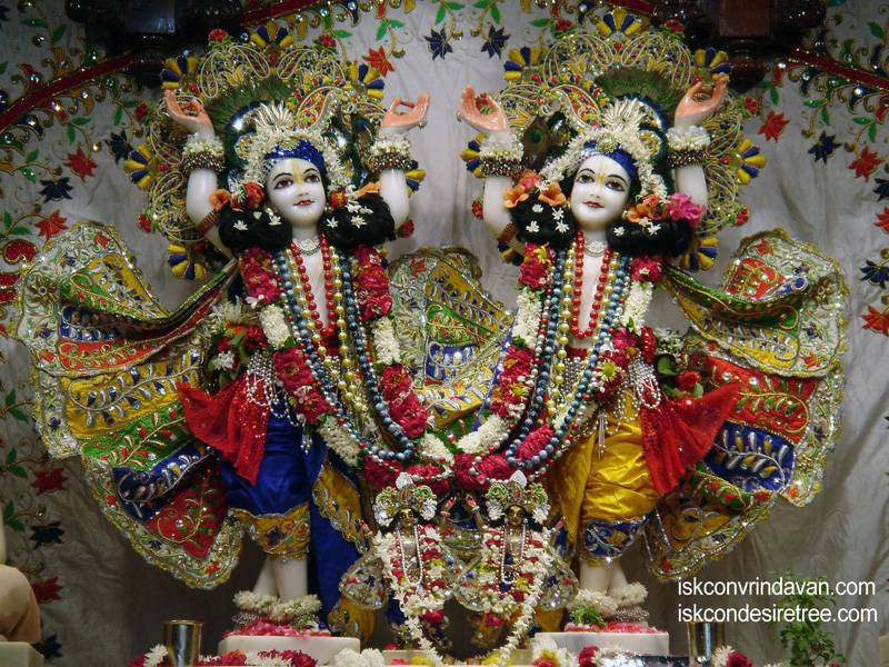 Sri Sri Gaura Nitai Wallpaper (024)