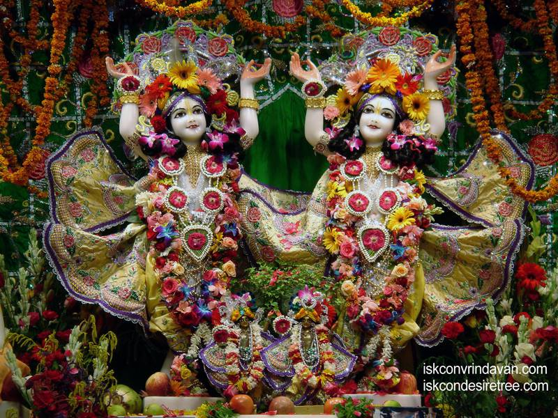 Sri Sri Gaura Nitai Wallpaper (027)