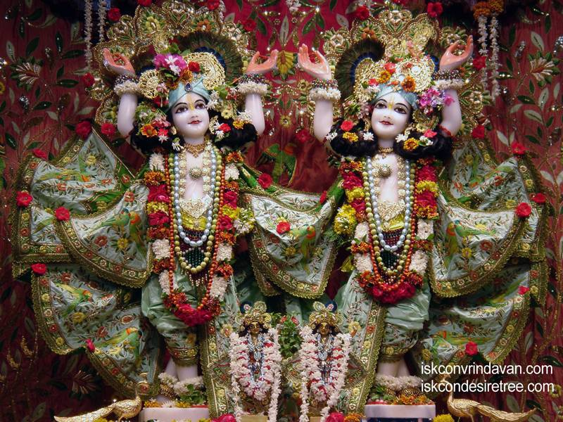 Sri Sri Gaura Nitai Wallpaper (031)