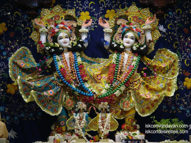 Sri Sri Gaura Nitai Wallpaper (033)