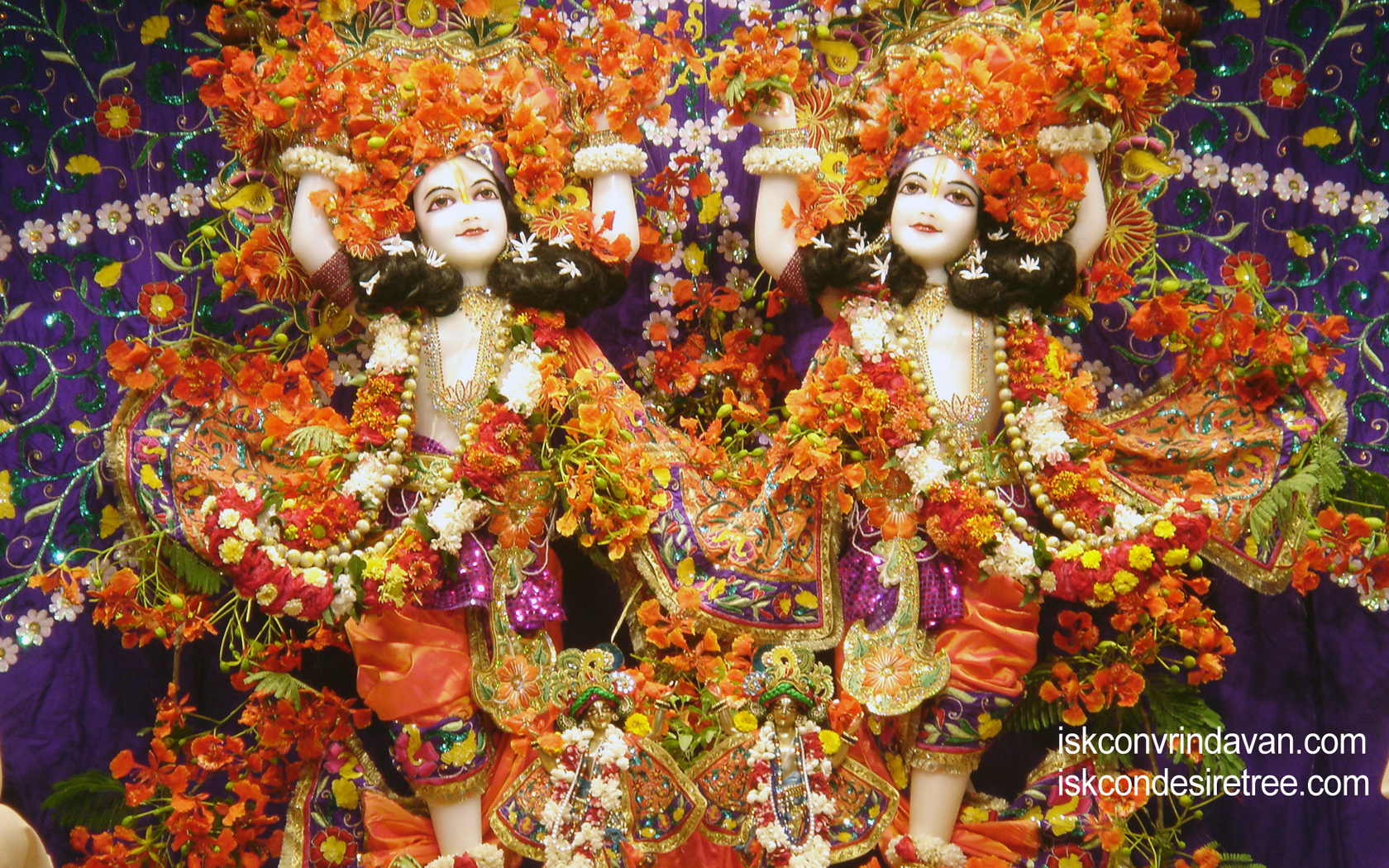 Sri Sri Gaura Nitai Wallpaper (038) Size 1680x1050 Download