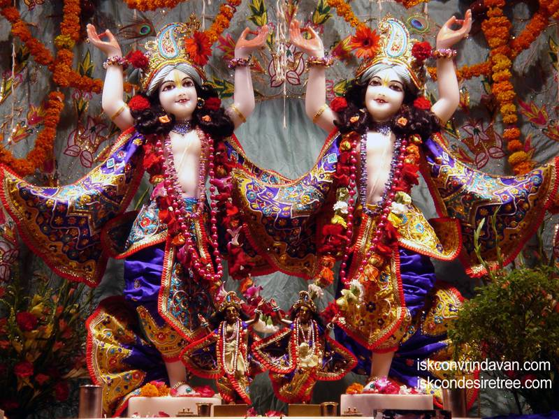 Sri Sri Gaura Nitai Wallpaper (046)