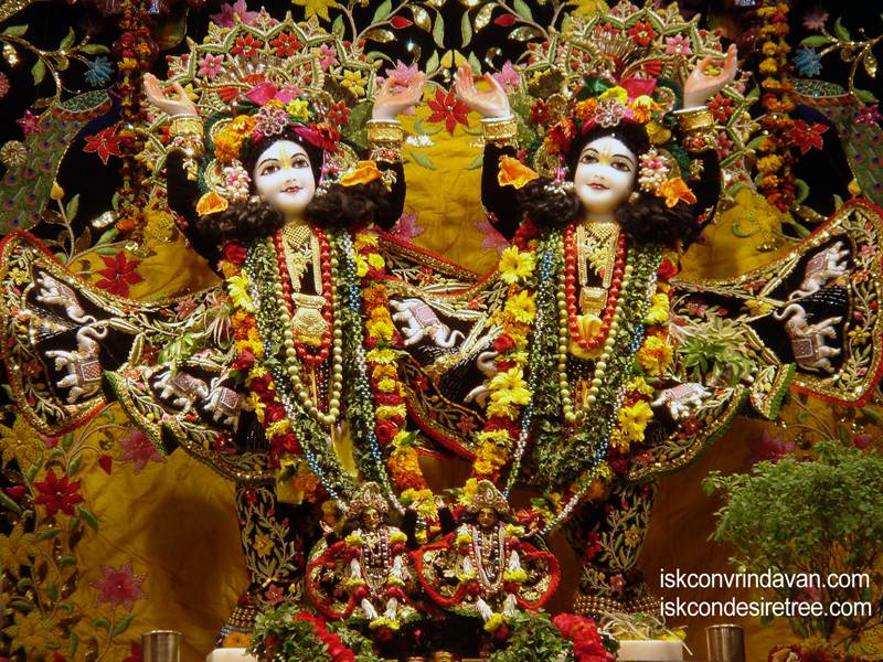 Sri Sri Gaura Nitai Wallpaper (050)