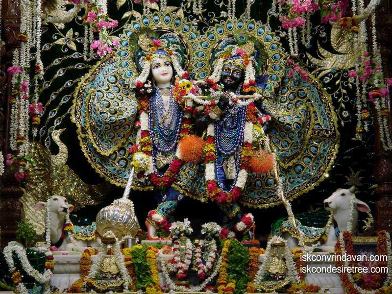 Sri Sri Krishna Balalram Wallpaper (050)