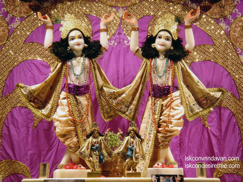 Sri Sri Gaura Nitai Wallpaper (067)