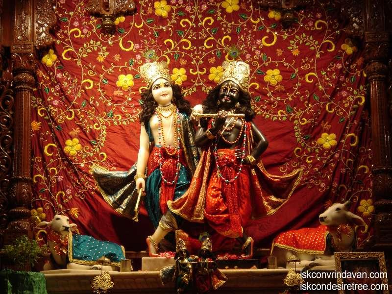Sri Sri Krishna Balalram Wallpaper (081)