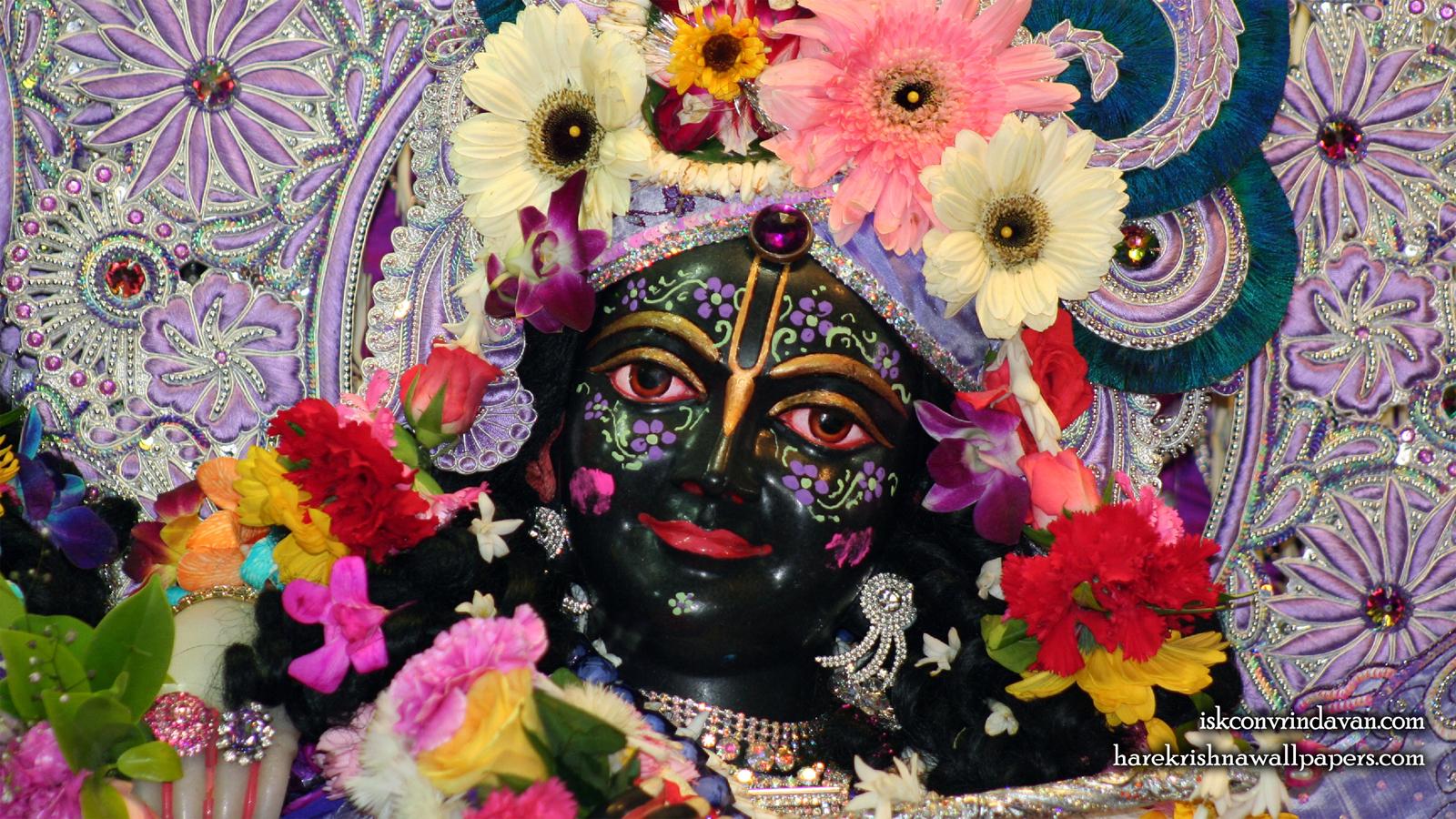 Sri Krishna Close up Wallpaper (001) Size 1600x900 Download