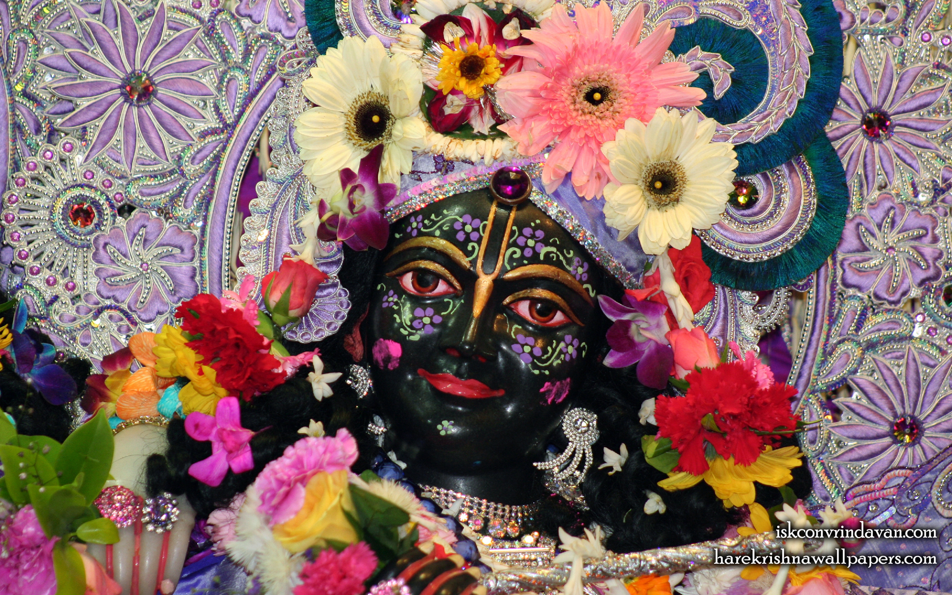 Sri Krishna Close up Wallpaper (001) Size 1920x1200 Download