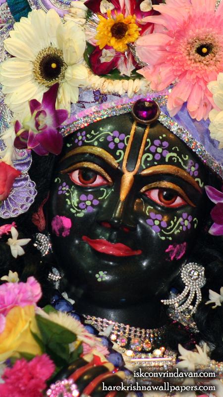 Sri Krishna Close up Wallpaper (001) Size 450x800 Download
