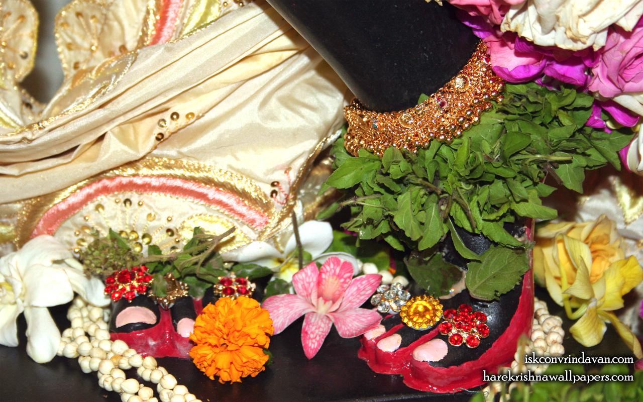 Sri Shyamsundar Feet Wallpaper (001) Size 1280x800 Download