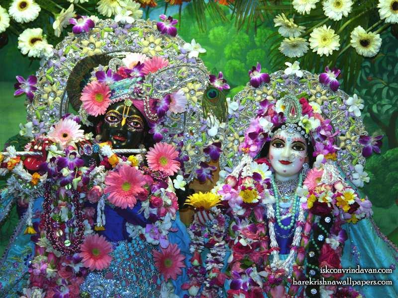 Sri Sri Radha Shyamsundar Close up Wallpaper (001)