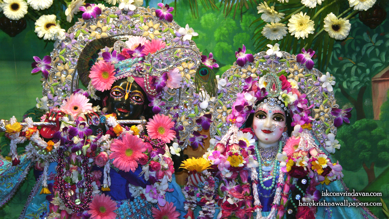 Sri Sri Radha Shyamsundar Close up Wallpaper (001) Size 1600x900 Download