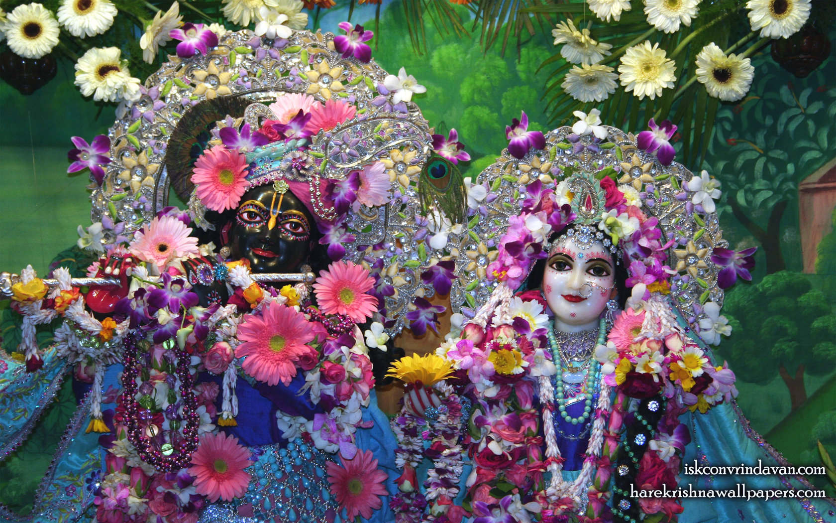 Sri Sri Radha Shyamsundar Close up Wallpaper (001) Size 1680x1050 Download