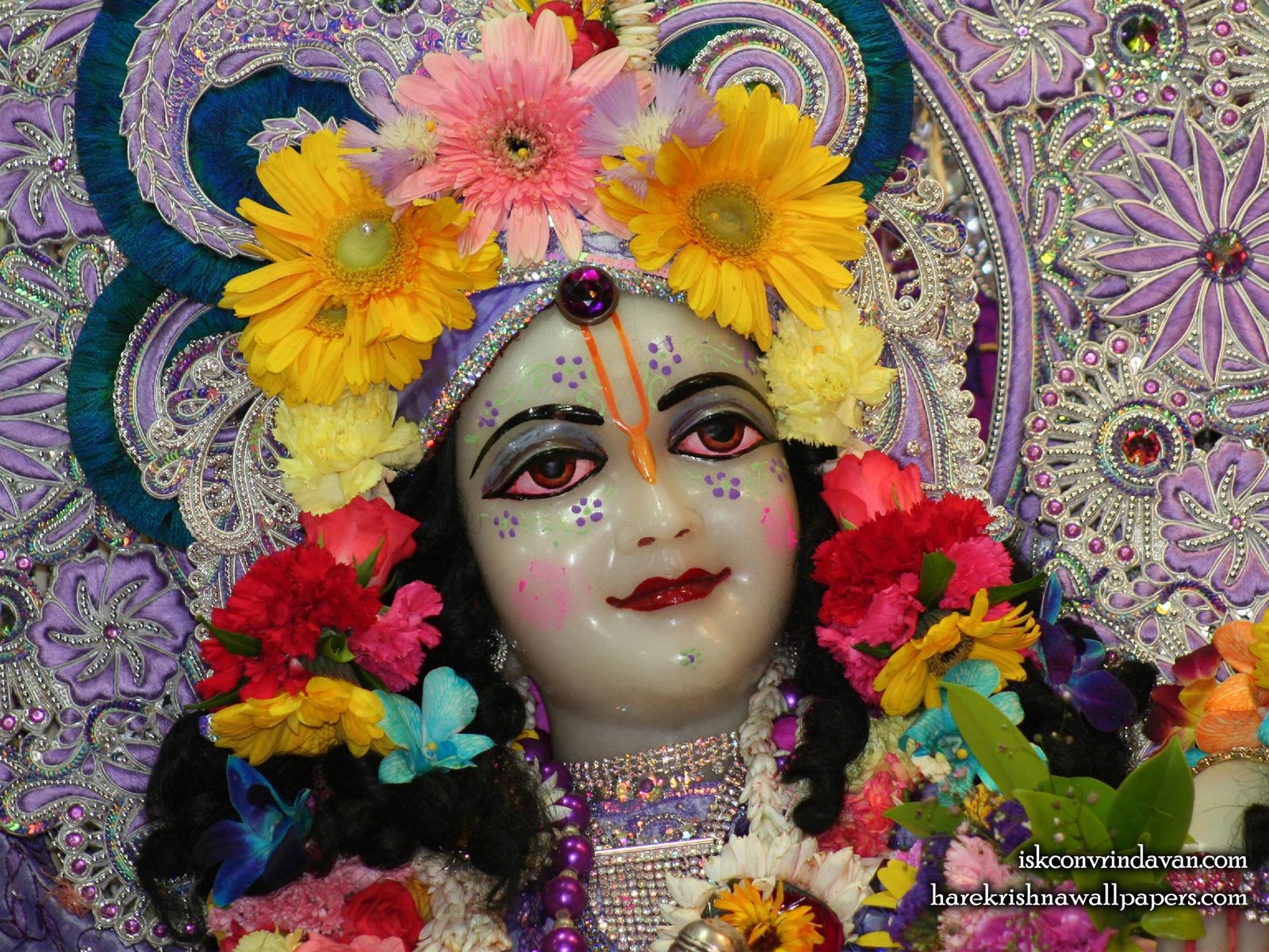 Sri Balaram Close up Wallpaper (002) Size1600x1200 Download
