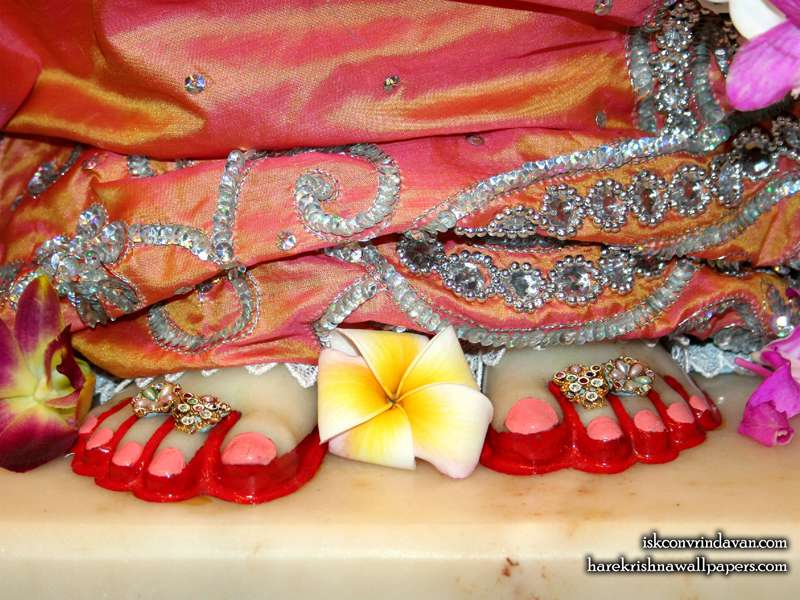 Sri Radha Feet Wallpaper (003)