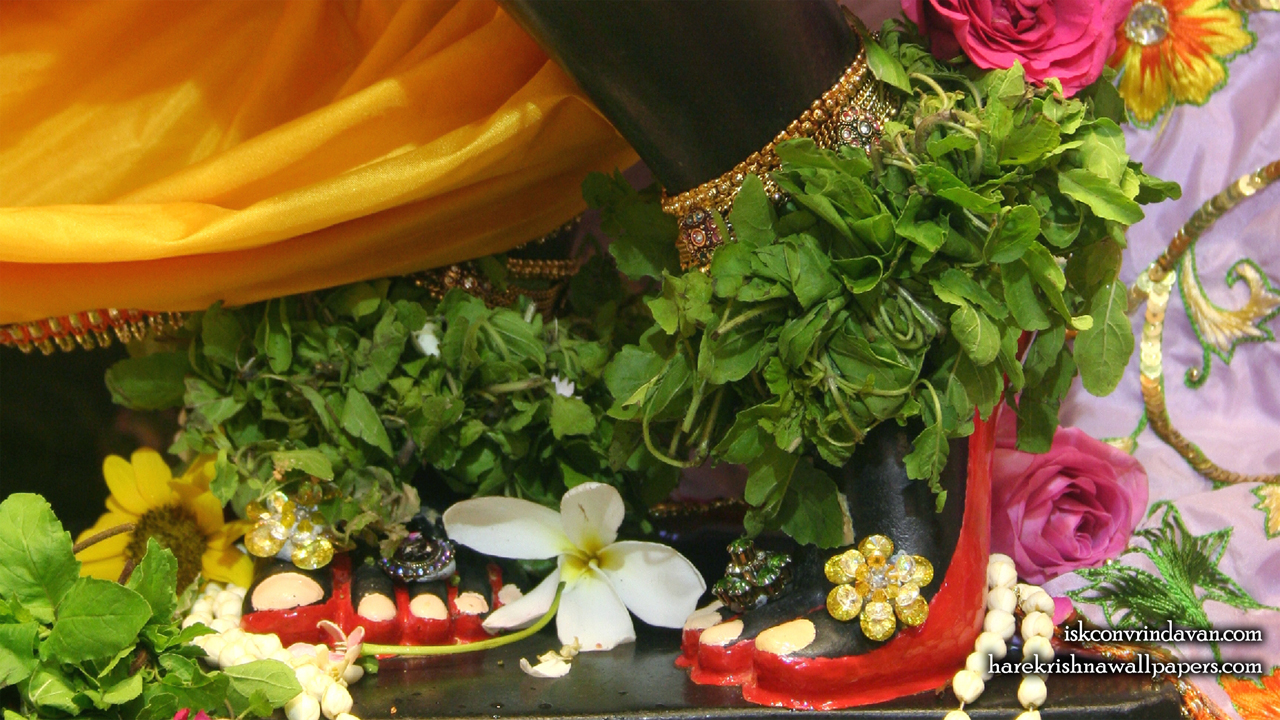 Sri Shyamsundar Feet Wallpaper (003) Size1280x720 Download