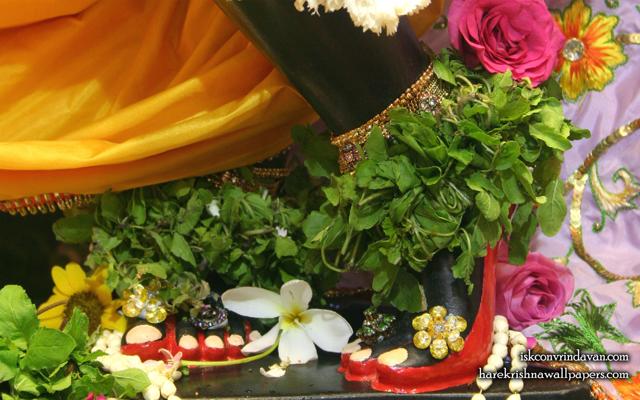 Sri Shyamsundar Feet Wallpaper (003) Size 1280x800 Download
