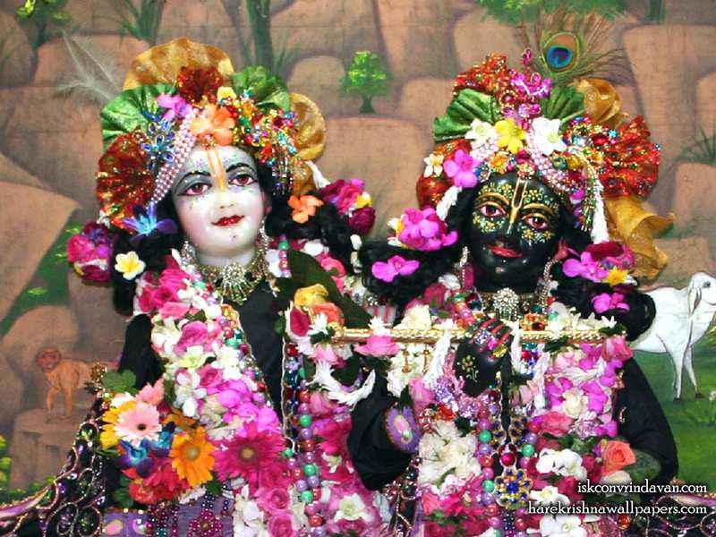 Sri Sri Krishna Balaram Close up Wallpaper (003)