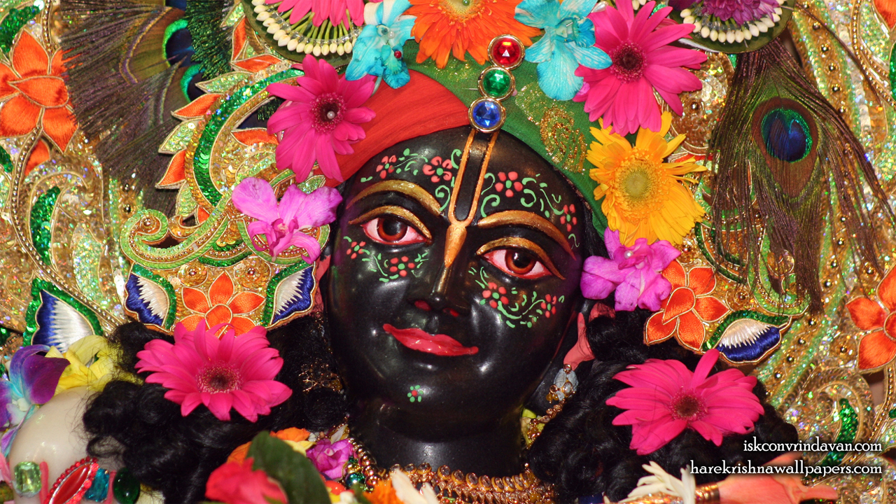 Sri Krishna Close up Wallpaper (004) Size1280x720 Download