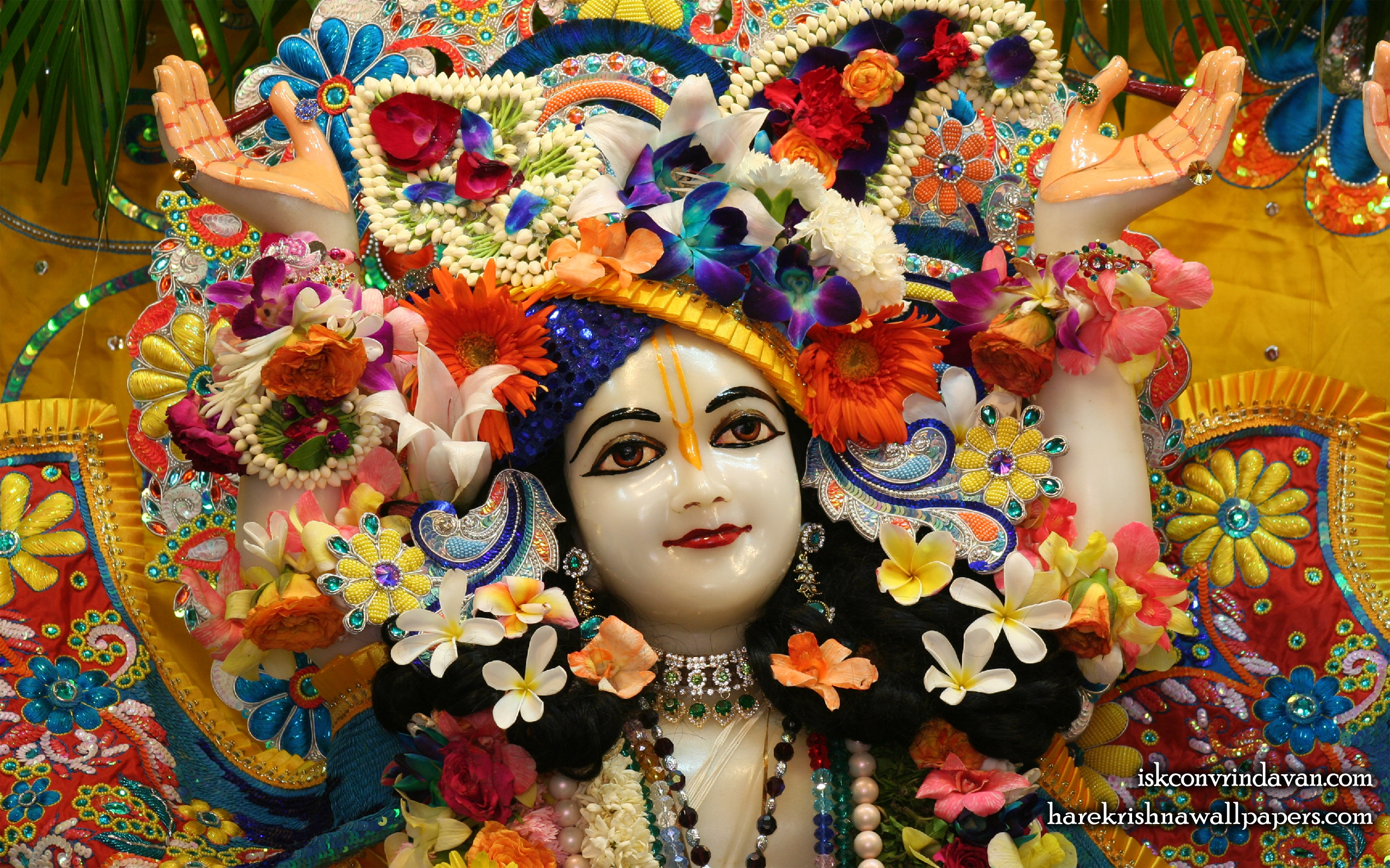 Sri Nitai Close up Wallpaper (004) Size 2560x1600 Download