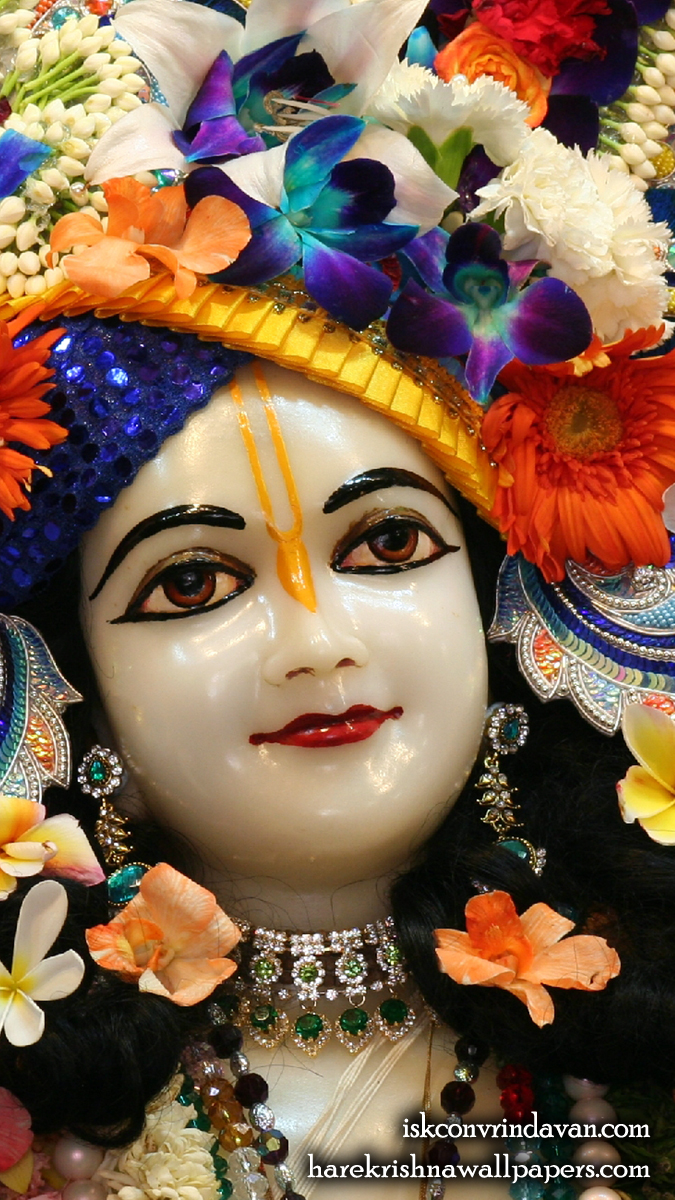 Sri Nitai Close up Wallpaper (004) Size 675x1200 Download