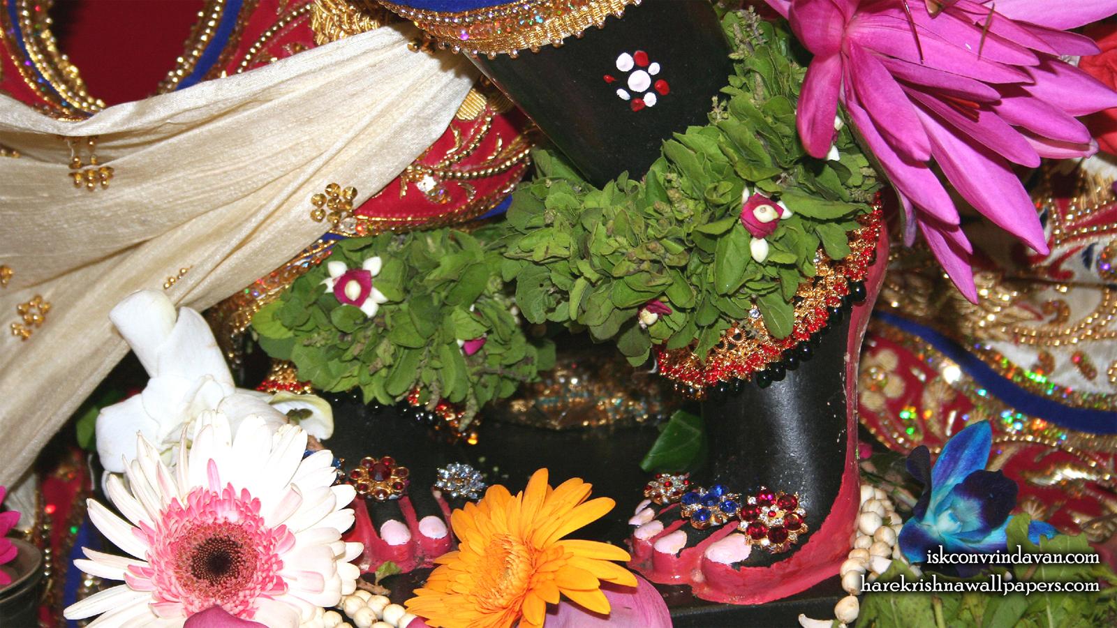 Sri Shyamsundar Feet Wallpaper (004) Size 1600x900 Download