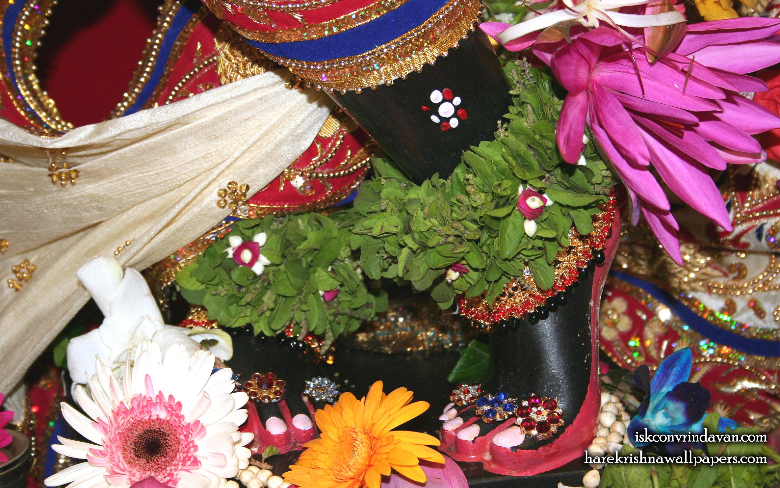 Sri Shyamsundar Feet Wallpaper (004) Size 2560x1600 Download