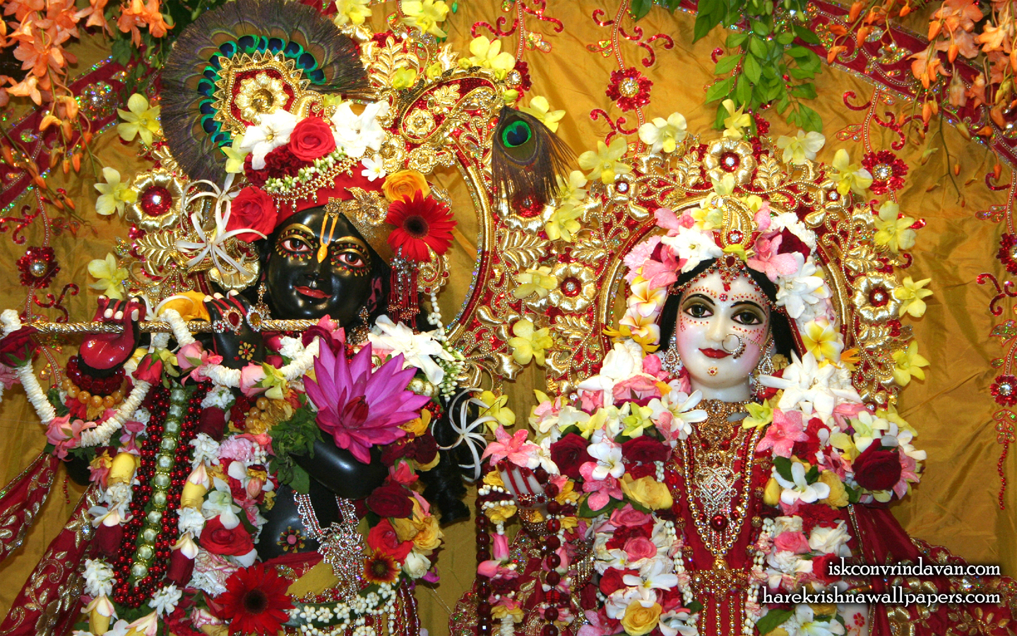 Sri Sri Radha Shyamsundar Close up Wallpaper (004) Size 1440x900 Download