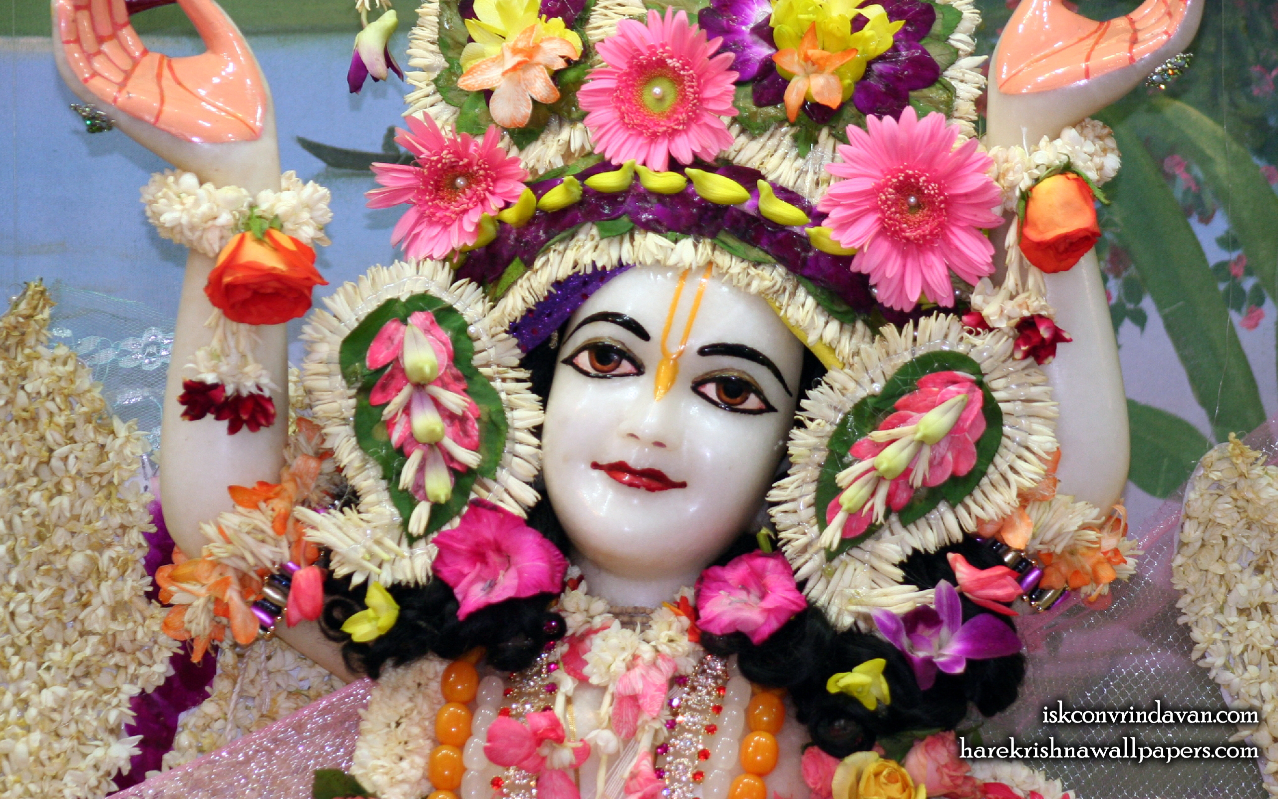 Sri Gaura Close up Wallpaper (005) Size 2560x1600 Download