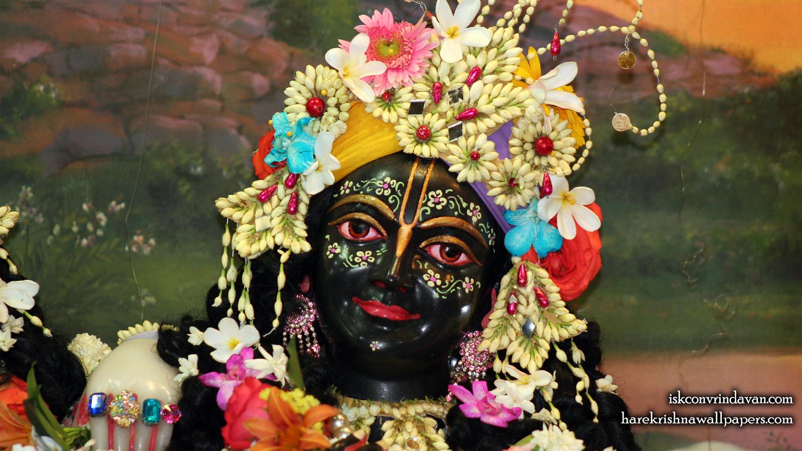 Sri Krishna Close up Wallpaper (005) Size 1600x900 Download