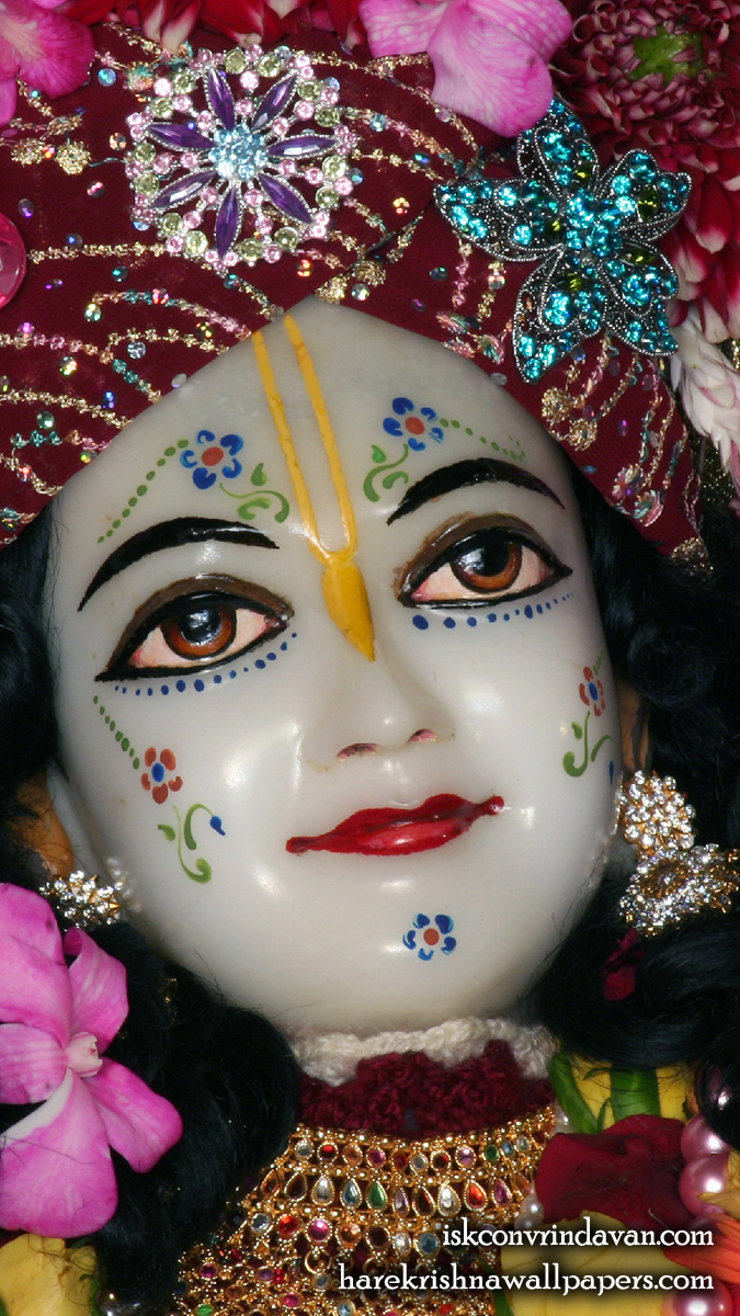 Sri Nitai Close up Wallpaper (005) Size 675x1200 Download