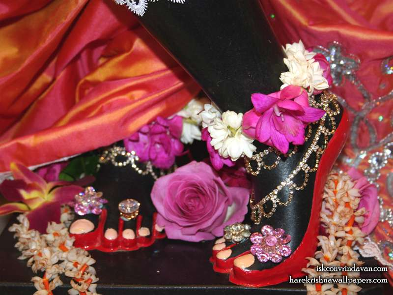 Sri Shyamsundar Feet Wallpaper (005)
