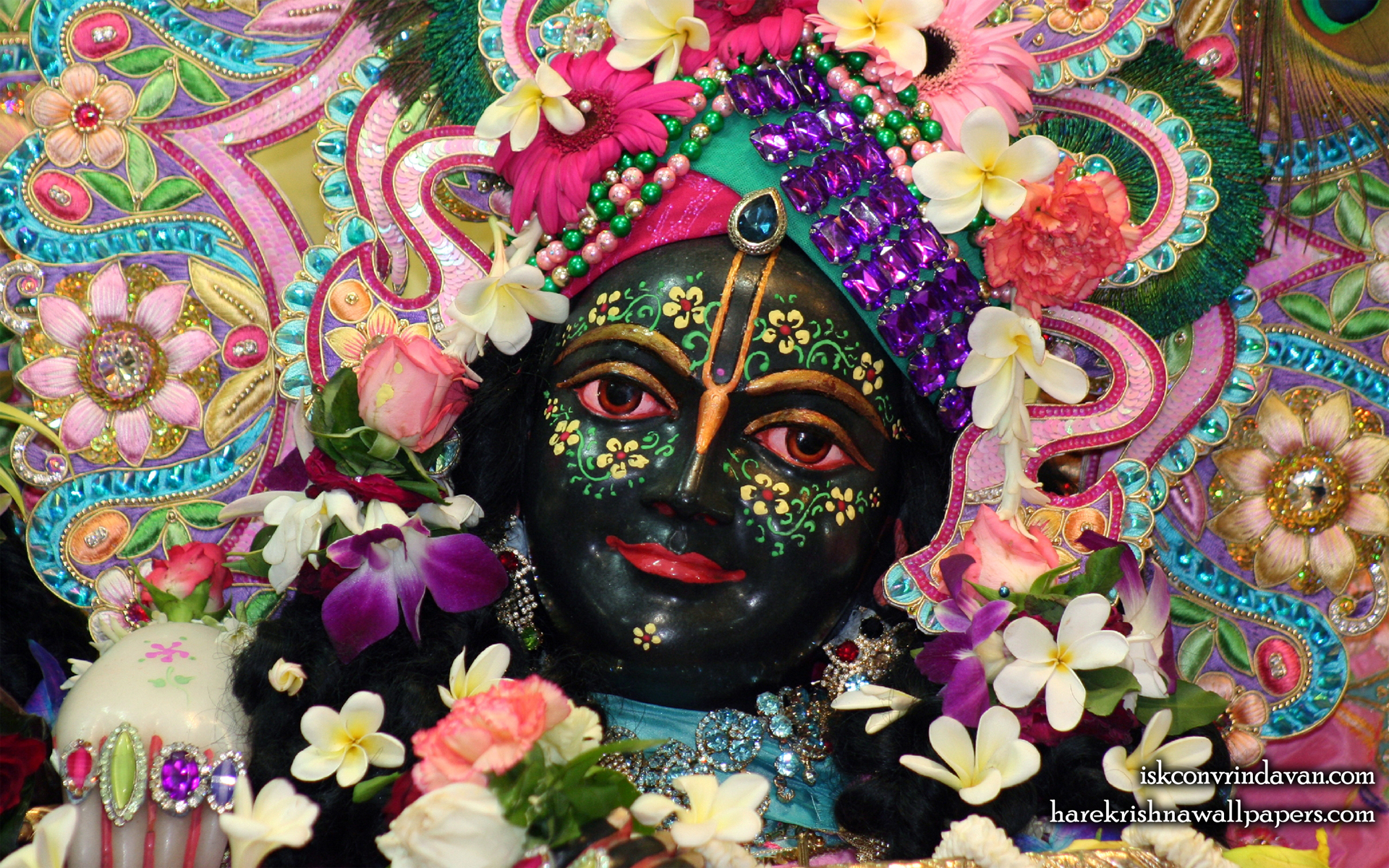 Sri Krishna Close up Wallpaper (006) Size 1920x1200 Download