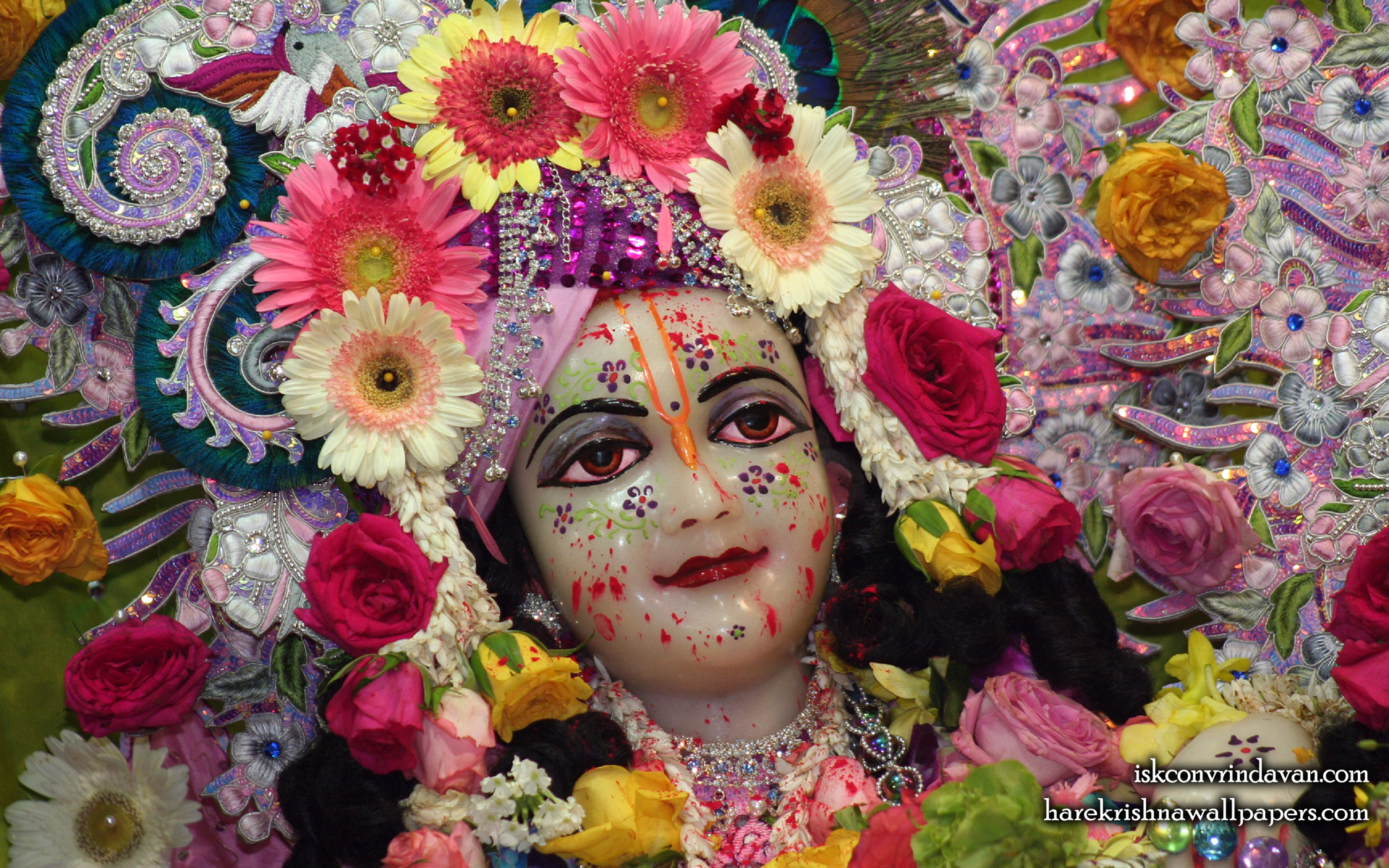Sri Balaram Close up Wallpaper (007) Size 1920x1200 Download