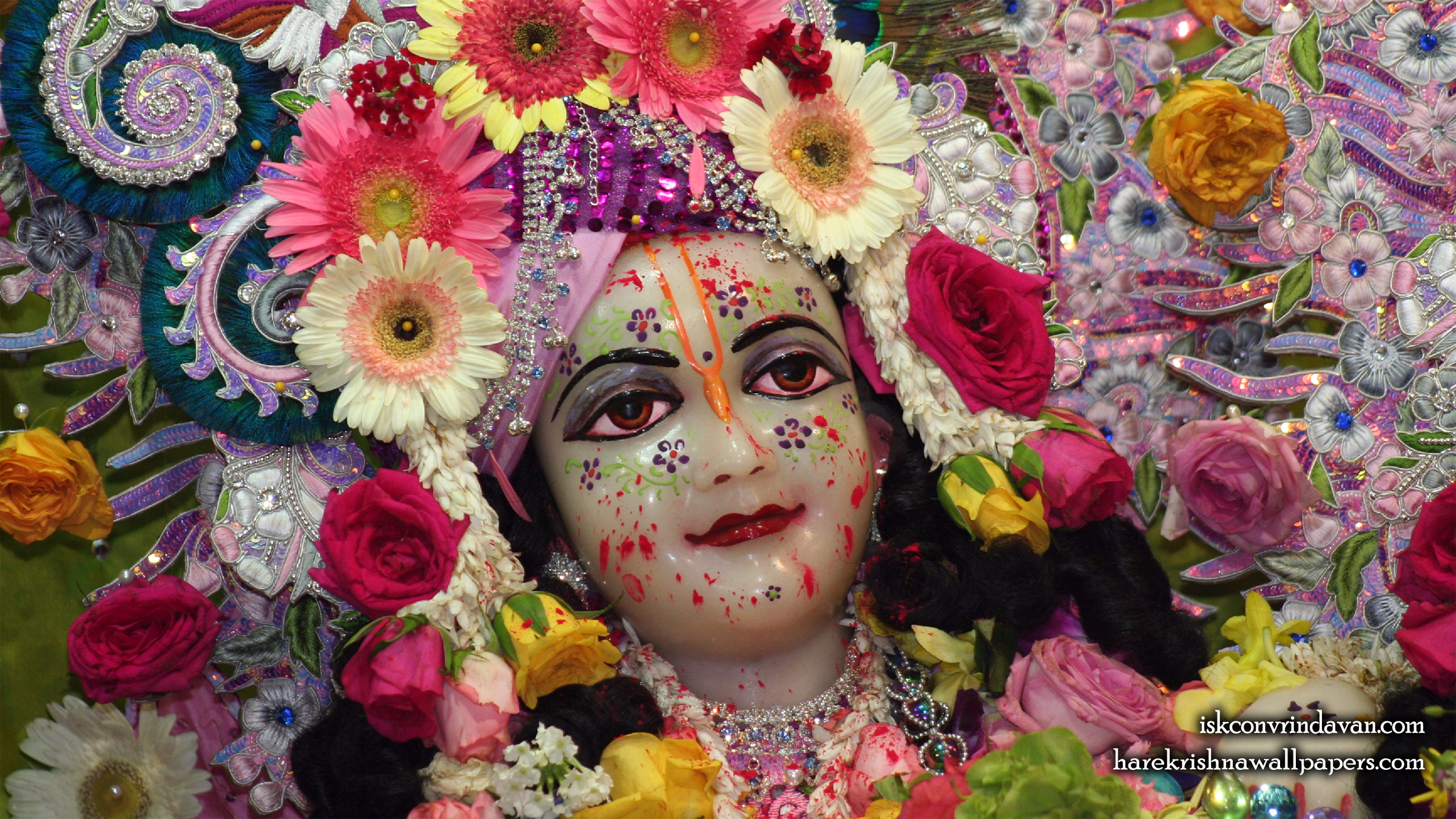 Sri Balaram Close up Wallpaper (007) Size 2400x1350 Download