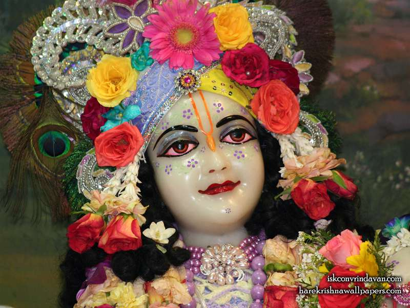 Sri Balaram Close up Wallpaper (008)