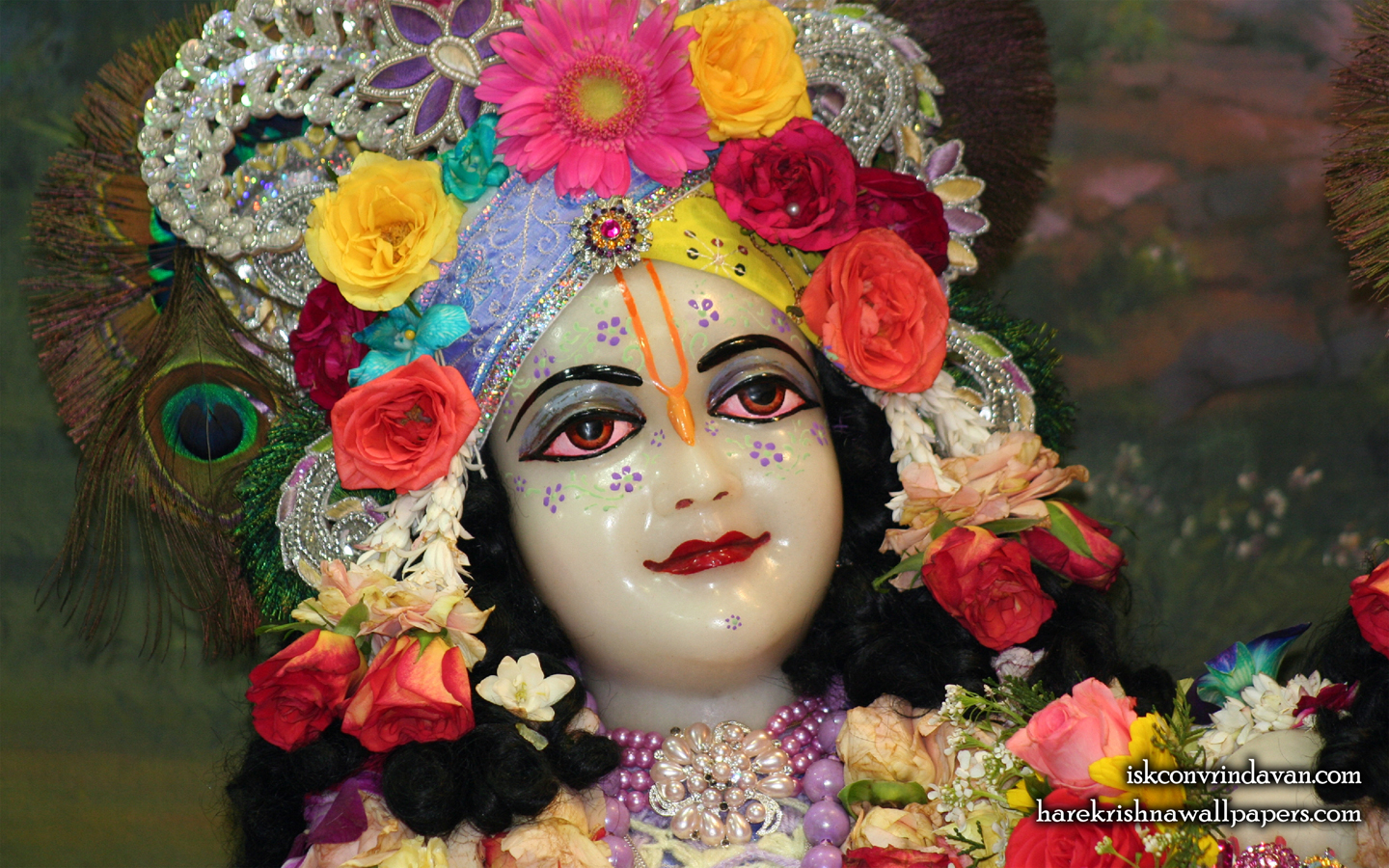 Sri Balaram Close up Wallpaper (008) Size 1440x900 Download