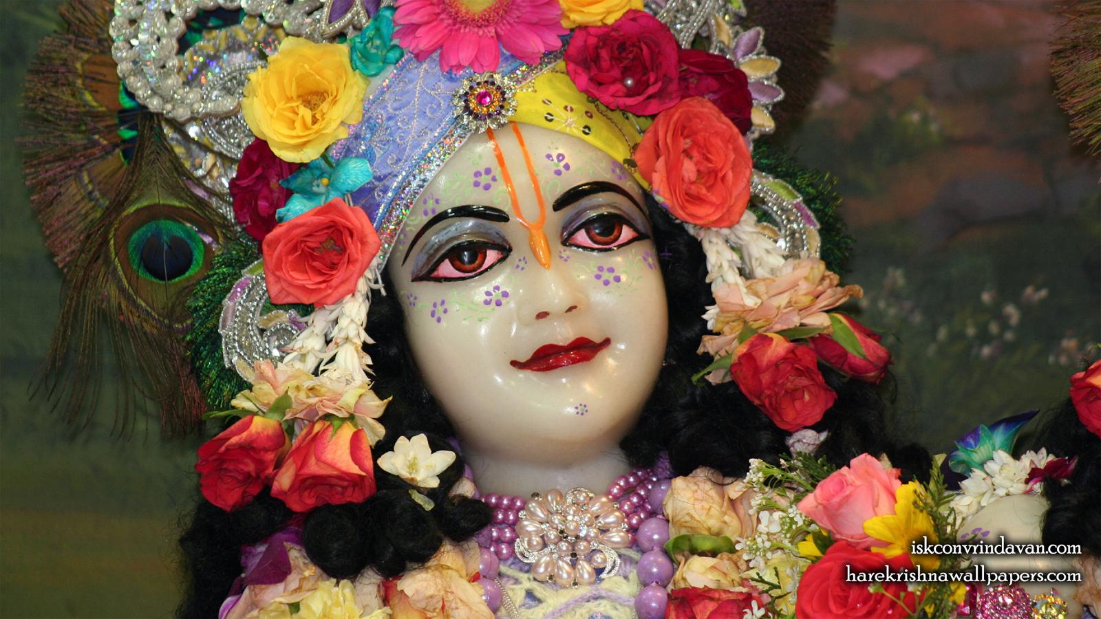 Sri Balaram Close up Wallpaper (008) Size 1600x900 Download
