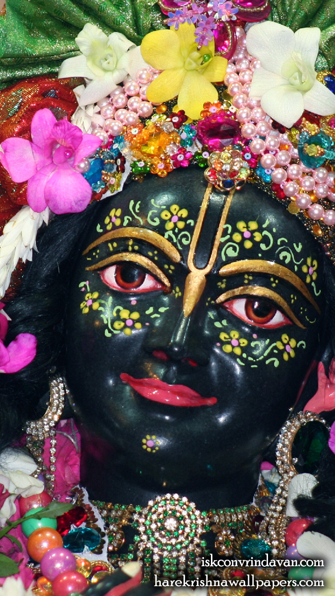 Sri Krishna Close up Wallpaper (008) Size 675x1200 Download