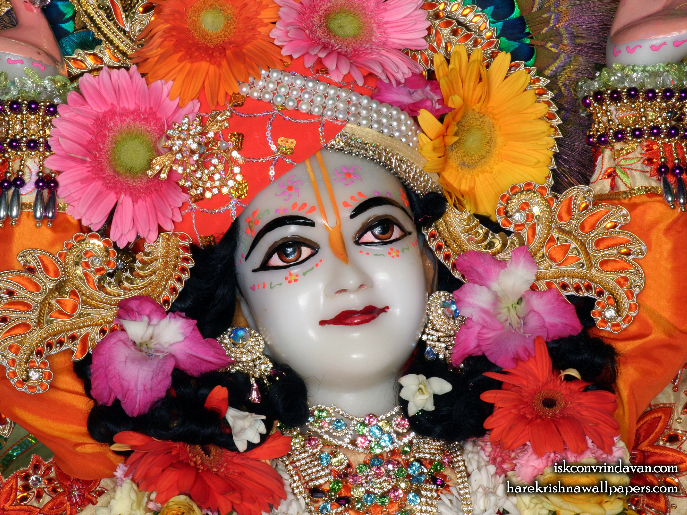 Sri Nitai Close up Wallpaper (008) Size 2400x1800 Download